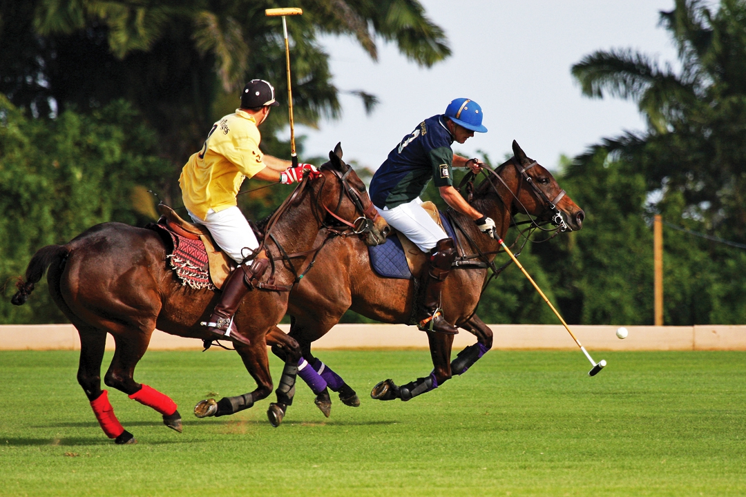 Barbados Polo Season 2020