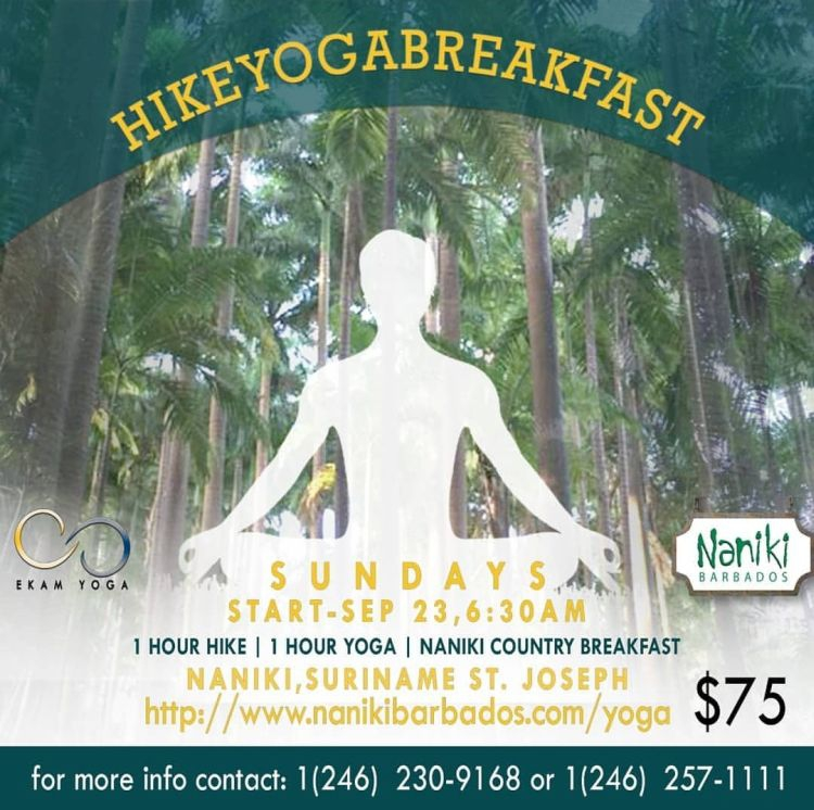 Hike - Yoga - Breakfast at Naniki