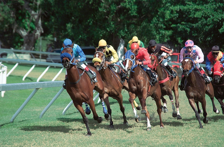 Horse Racing at the Garrison - April 2019