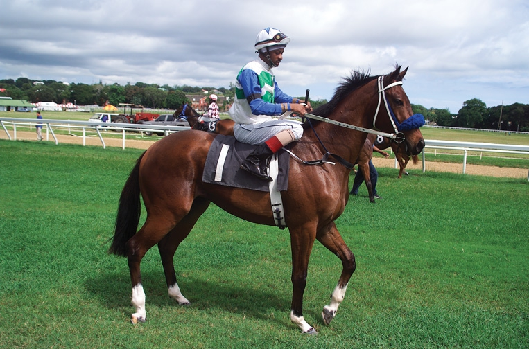 Horse Racing at The Garrison - August 2019