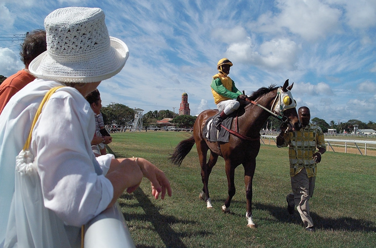 Horse Racing at the Garrison - January 2019