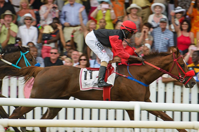 Horse Racing at the Garrison - March 2019