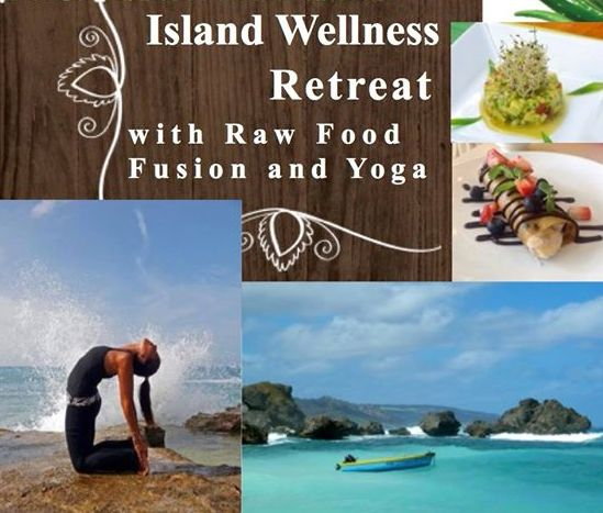 Island Wellness Retreat - Raw Food and Yoga