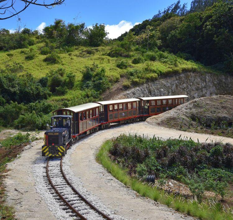 St. Nicholas Abbey Heritage Railway Tours