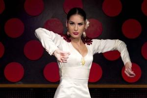 4-Hour Tapas Evening Tour and Flamenco Show