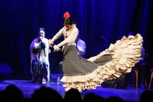Barcelona: 1-Hour VIP Flamenco Show
