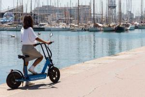 Barcelona and Sagrada Familia 2-Hour Tour by eScooter
