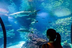 Barcelona Aquarium: Skip-the-Line Admission Ticket