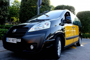 Barcelona (BCN) Airport from/to Cruise Port Private Transfer