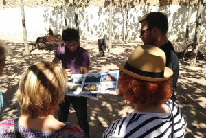 Barcelona: Discover Gaudi Architectural Guided Tour