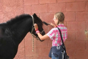 Barcelona: Horseback Ride in a Nature Park