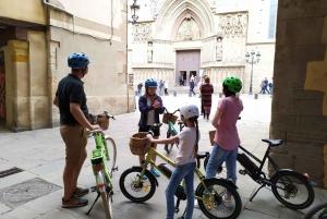 Barcelona Main Sights 2.5-Hour Tour by E-Bike
