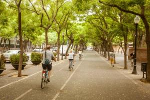Barcelona Montjuic Three-Hour Bike Tour