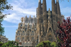 Barcelona & Park Güell: Private Half-Day Tour with Pickup