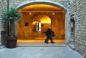 Barcelona Picasso Museum and Gothic Quarter Guided Tour