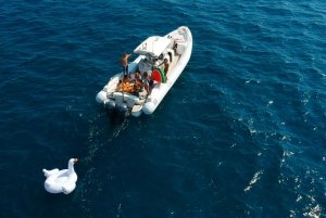 Barcelona: Private Speed Boat Experience