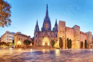 Barcelona: Private Walking Tour, Wine Tasting & Tapas Dinner