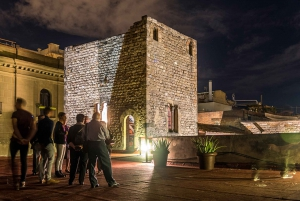 Barcelona: Requesens Palace Guided Visit, Cava & Show