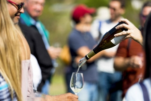 Barcelona: Sailing Trip and Local Winery Visit