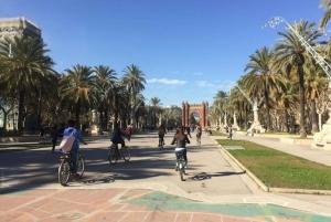 Barcelona: Small-Group Evening Bike Tour