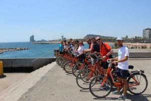 Bike Sightseeing Tour