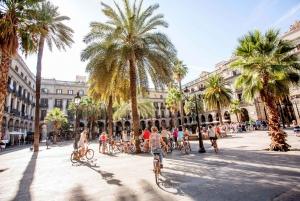 Bike Tour: Gothic Quarter, Gaudi, and Olympic Village