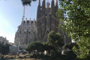 Early Entrance Sagrada Familia Tour
