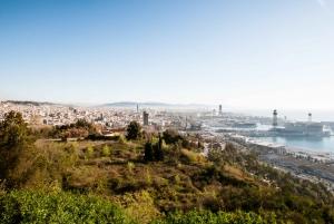 Fast Track: Sagrada Familia & Barcelona Full-Day Tour