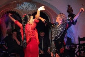 Flamenco Show at Tablao Flamenco Cordobes