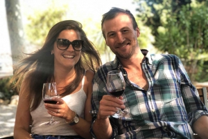 From Barcelona: Vineyard Wine Tasting and Sitges Town Tour
