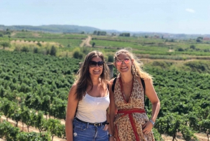 From Vineyard Wine Tasting and Sitges Town Tour