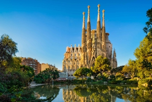 Full-Day Guided City Highlights Tour