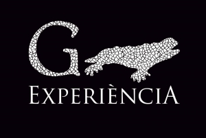 Gaudí Experiència Barcelona Admission Ticket
