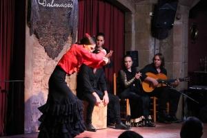 Half-Day Walking Tour with Tapas & Flamenco Show