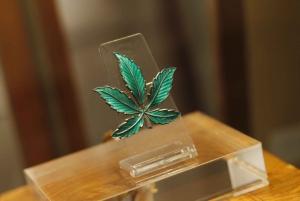 Hash Marihuana & Hemp Museum Entry Ticket