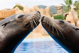 Palafolls: Marineland Dolphinarium and Water Park Tickets