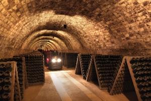 Penedès: Codorniu Winery Tour with Cava Tasting