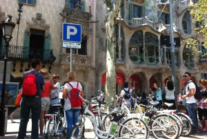 Private 5 Neighborhoods Tour by Electric Bike