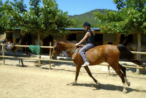 Private Horse Riding and Nature Tour from Barcelona