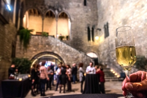 Requesens Palace Guided Visit, Cava & Show