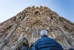 Sagrada Família: Guided Tour with Tower Visit