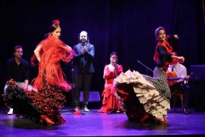 Theater Flamenco Zone C Tickets