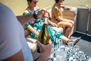 Belgrade: Private VIP 2-hour Sightseeing Cruise