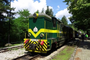 From Belgrade: Drina River House, Sargan 8 Train & Drvengrad