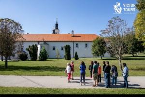 From Belgrade: Novi Sad & Sremski Karlovci Full-Day Tour