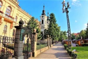 From Belgrade: Sremski Karlovci & Novi Sad with Wine Tasting