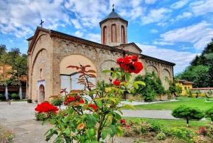 From Belgrade: Tara National Park & Drina River Valley Tour
