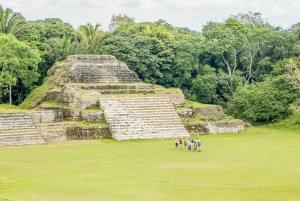 Belize City: Half-Day Altun Ha Temple & Belize City Tour