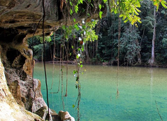 Bladen Natural Reserve