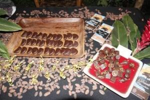 Cotton Tree Chocolate